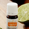 Culinary Vitality Essential Oils Make Your Cooking Taste Better