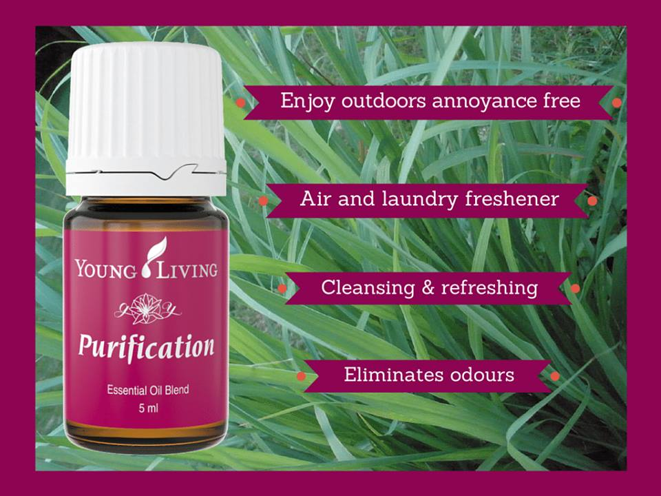 Purification Helps Clear Bad Odors From Your Car
