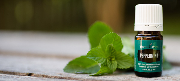 Tips On How To Use Peppermint Essential Oil